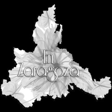 Micropigmentación Cejas Ojos Labios Zaragoza